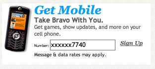 image: Bravo Mobile Web Form
